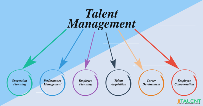 Components to Look For in a Talent Management System